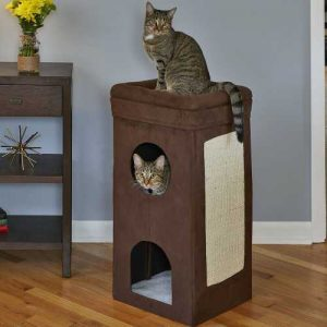 MidWest Cat House