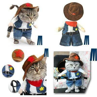 Pet Costume for Halloween