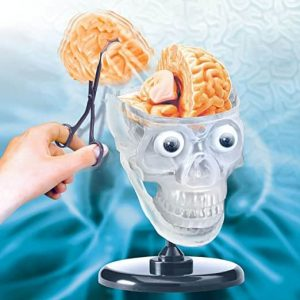 Science Toy for Kids