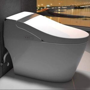 Elongated Toilet Seat, Dual Flush Toilet